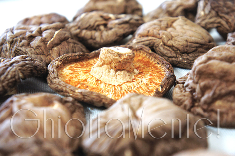 funghi-shiitake-06a-800