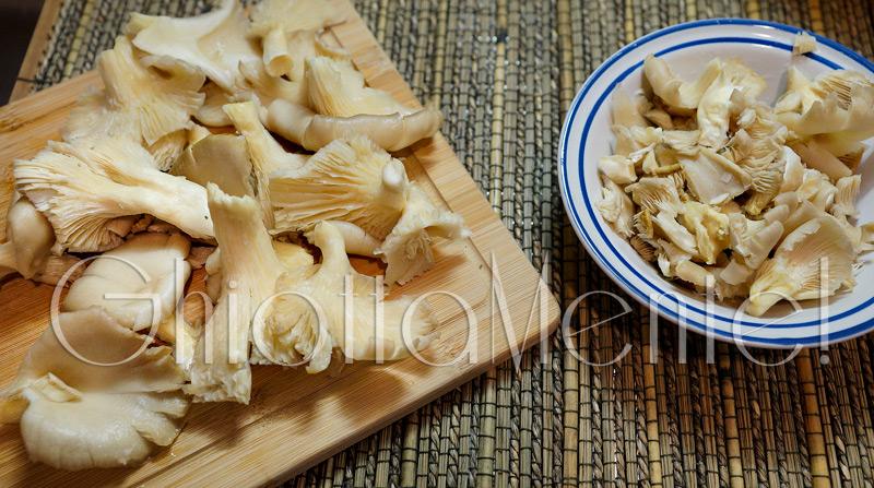 funghi-pleos-brace-373a-800