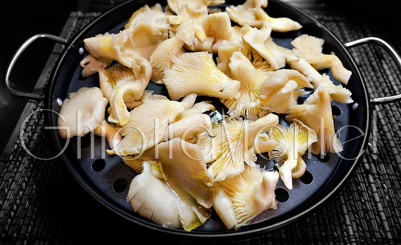 funghi-pleos-brace-378a-800